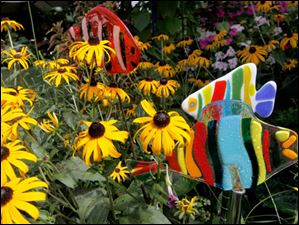 Black-eyed Susans and fused glass garden fish stakes, made by Susan Sharkey and her father John Sharkey.