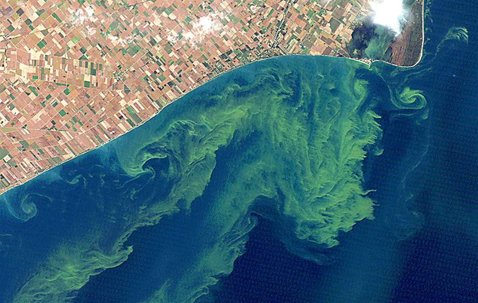 Lake-Erie-Runaway-Algae
