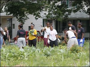 The high school students working with local residents in the garden.