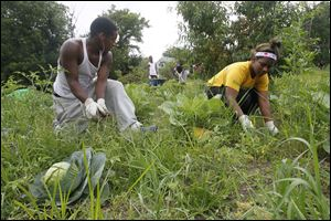 Woodward High School students Charles Moss, 17, a senior, and Shyanne Crawford, 16, a junior, work on the weeds in the My Brother's Keeper community garden on Islington Street on Saturday.