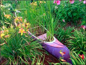 Cheryl Metro's roadside garden has a canoe in it on Co. Rd. 8-1.