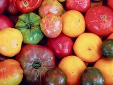 A-wide-assortment-of-tomatoes