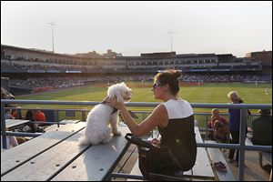 Maggie Rowe, 24, of Sylvania and her dog Otis enjoy a canine's night out at the ball park.