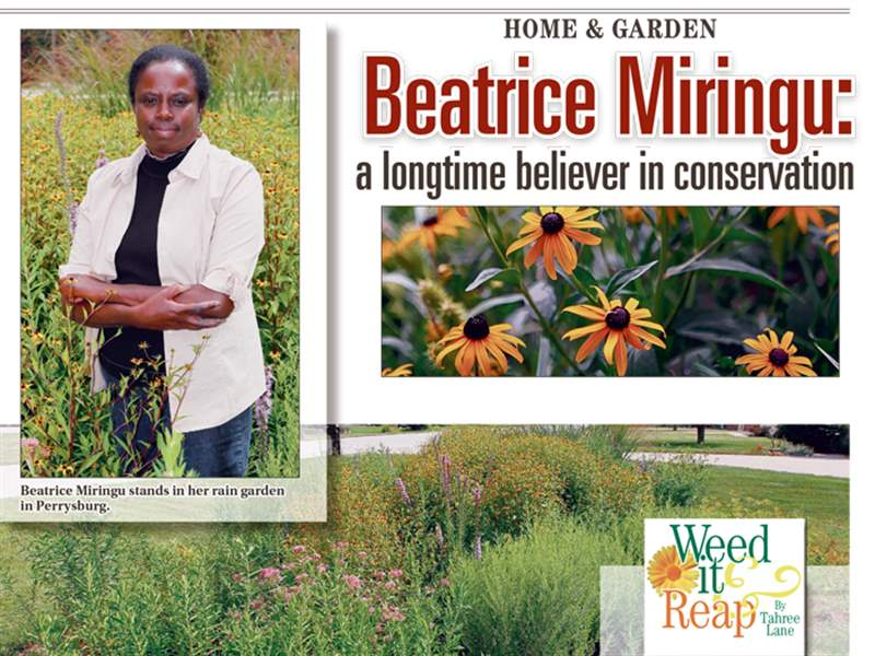 Weed-It-And-Reap-Beatrice-Miringu
