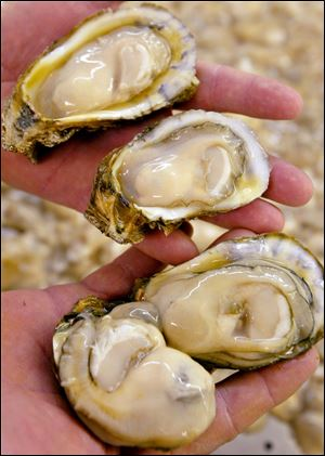 Walt Churchill's Market at 3320 Briarfield Blvd. in Monclova Township will hold its third annual Oyster Blast on Saturday from 1-4 p.m. Appropriate wines will be served with oyster