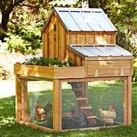 Cedar-Chicken-Coop-Run