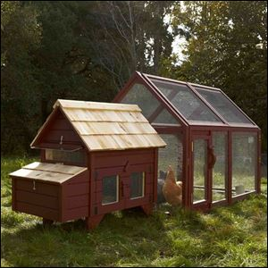 Williams-Sonoma's Briar Extended Chicken Coop & Run is an unexpectedly big hit with consumers.