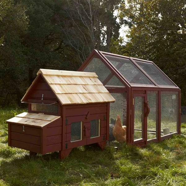 Briar-Extended-Chicken-Coop