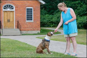 Barbara Costilla, who is fostering Grady for Planned Pethood, shares a treat with him at Wildwood Metropark.