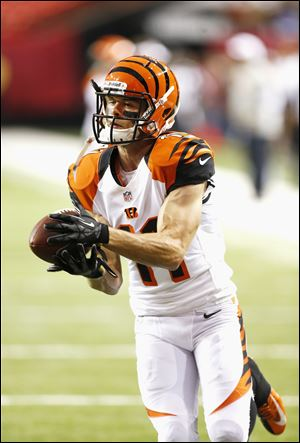 Cincinnati Bengals Wide Receiver Dane Sanzenbacher in action during a game against the Atlanta Falcons.
