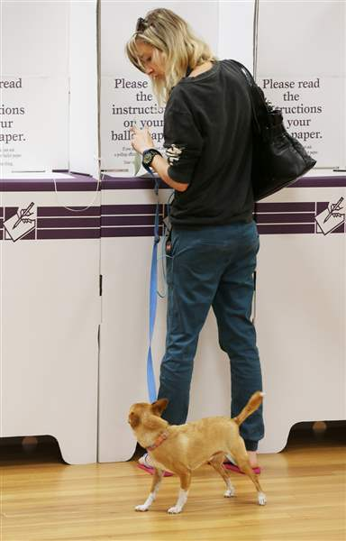 Australia-Election-doggie