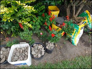 The 95-year-old gardener screened these rocks out of soil for a new bed.