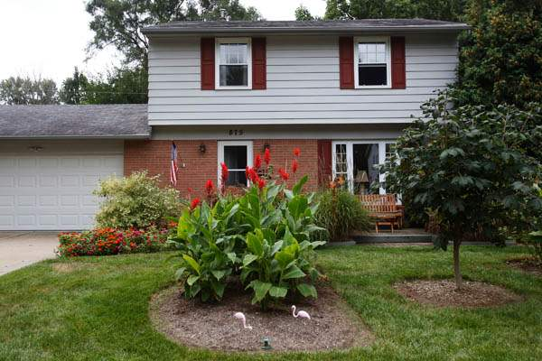 The-front-yard-features-red-canna-flowers