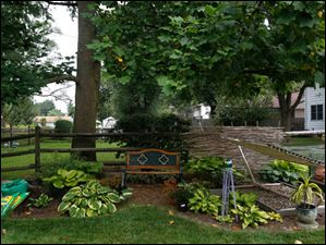 An area beneath a neighbor's tree is ripe for expansion as a shade garden.