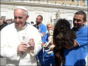 Pope Francis is shown a dog by a member of the Federazione Italiana Sport Cinofili (Italian Federation of Canine' Sports), following his weekly general audience at the Vatican.