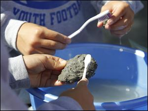 Hundreds of kids got their hands dirty and wet as they clean their found fossils.