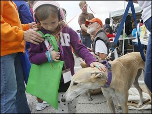 Alexys Carman, 6, of Grand Rapids, Ohio, with Kizzey, a seven-year-old rescued Greyhound with the North Coast Greyhound Connection.