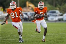 Pinckney-running-for-TD-Southview