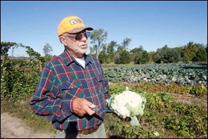 David Moenter with a white cauliflower he's just cut. He sells at the Bowling Green and Pemberville farmers' markets.