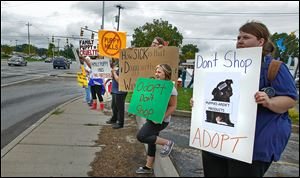 Protesters, including Lindsey Reed of Toledo, right, hold signs on Talmadge and Monroe as they demonstrate against the Family Puppy store that is coming to Westfield Franklin Park.