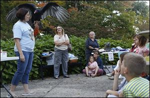Lily the Turkey Vulture spreads her wings as she is held by Mary Seth, director of Wings, Paws, and Prayers Wildlife Rehabilitation, during a presentation.