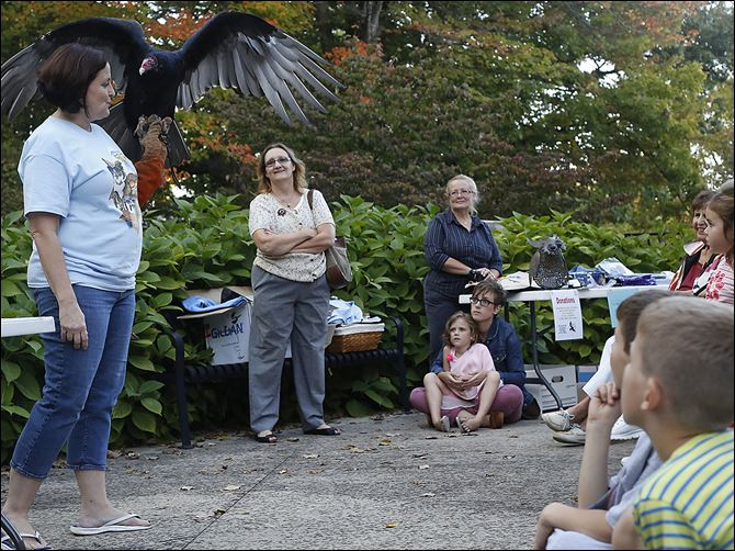 07n2vulture mary seth Lily the Turkey Vulture spreads her wings as she is held by Mary Seth, director of Wings, Paws, and Prayers Wildlife Rehabilitation, during a presentation.