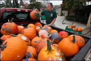 Toledo Zoo grounds worker Kevin Kerste unloads pumpkins at the zoo.