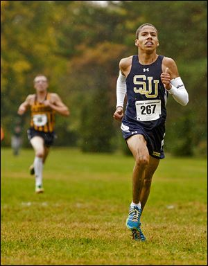 St. John's junior Tevin Brown took the individual crown in District 2.