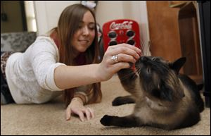 Danielle Wiley gives a treat to her cat Cairo in Ballville Township, Ohio. One of her three cats loves to swallow anything stringlike.