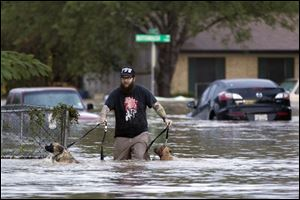 A man walks with two dogs through floodwaters on Quicksilver Boulevard today in Austin, Texas.