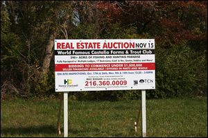 A sign advertising the auction sits at the corner of the Castalia Farms property, at the junction of Heywood and Prairie roads.