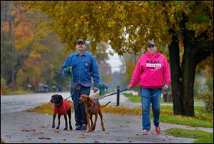 Dan Pope walks Mr. Jingles as Laura Berlincourt handles Ellie Mae near their home on Bayshore Road in Oregon. The couple said both dogs have adapted well, and Mr. Jingles' spirits have perked up.