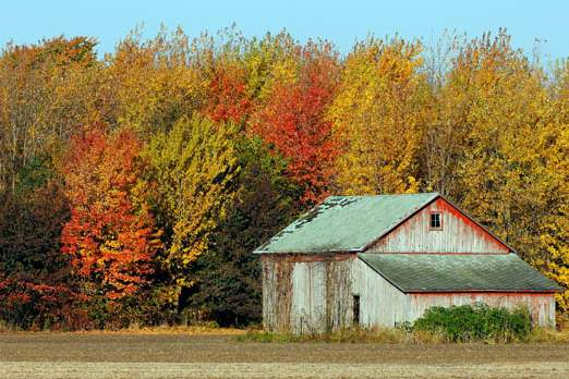 A-faded-barn-sits-among-fall-colors-near-the-corner-of-Yan