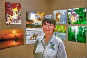 Gallery manager Karen Pugh at the National Center for Nature Photography at Secor Metropark calls the exhibits 'just a wonderful tie-in to the whole Oak Openings area.'