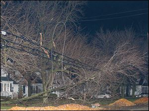Branches from a tree rest on power lines along Louisiana Avenue in Perrysburg Sunday.