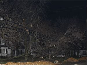 Branches from a tree rest on power lines along Louisiana Avenue in Perrysburg.