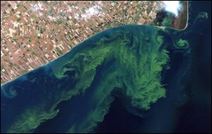 A satellite photo reveals algae blooms swirling on Lake Erie. Scientists expect the blooms to worsen with climate change and modern farming practices.