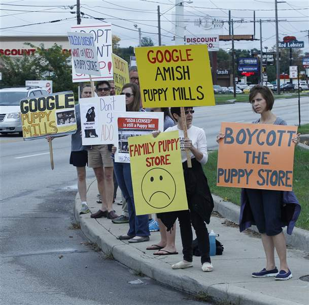 CTY-puppy06p-protest