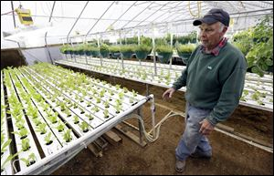 Earl Hafner talks about growing vegetables in his aquaponics greenhouse on his farm, near Panora, Iowa.