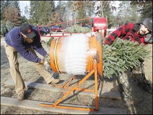 Chad Snyder, of Toledo, left, pulls the tree placed into the baler by Andrew Lewallen, of Liberty Center.