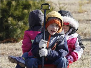Jacob Stine, 5, and Lily, 4, watch as the tree is cut down. Their sibling Addison, 2, is in the back of the wagon.