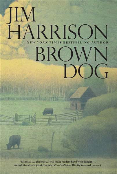 Book-Review-Brown-Dog