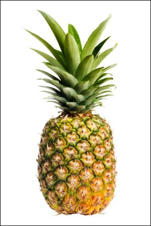 Pineapple has been a symbol of hospitality for centuries.