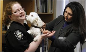 Lucas County Canine Care & Control director Julie Lyle is licked by Maserati as Lucas County Auditor Anita Lopez attaches his dog license.