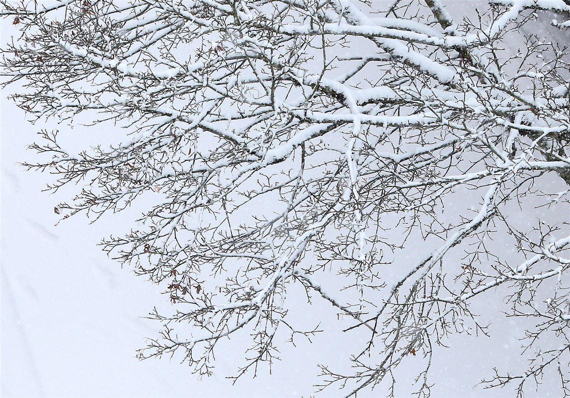 Snow Sleet Ice Hit Large Swath Of U S The Blade