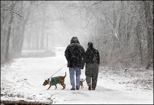 Extra care should be taken with pets in cold weather. Deicing agents and antifreeze can be toxic if pets lick it off their paws. Outdoor pet shelters should be kept off the ground and away from the wind.
