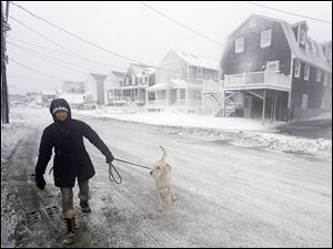 Sonja Keller braves wind-whipped snow while walking her dog along the shore in Scituate, Mass. Temperatures hovered in single digits with gusts of up to 40 mph, creating dangerous wind chills.