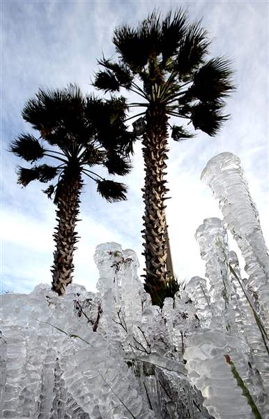 APTOPIX-Deep-Freeze-Florida