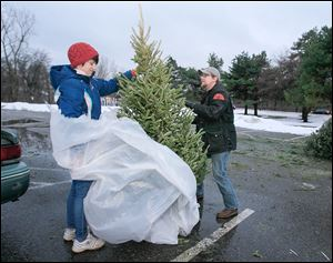 Courtney Macklin, left, and Justin Richmond of Toledo leave their Christmas tree at Jermain Park for city pickup.