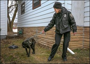 Nancy Schilb, animal cruelty investigator for the Toledo Area Humane Society, removes a dog — a Labrador christened 'Adelaide' —from a home on Broadway last week.